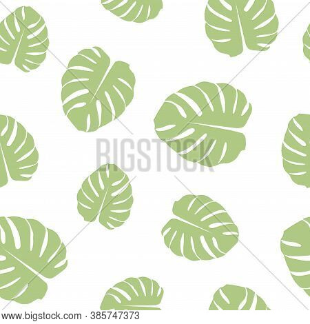 Seamless Pattern With Sage Green Monstera Leaves On White Background.