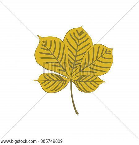 Flat Vector Cartoon Illustration Of Autumn Withered Chestnut Leaf. Natural Fall Foliage Element For
