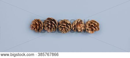 Fir Cones Flat Lay On Blue Background Top View With Copy Space. Natural, Organic Forest Background.