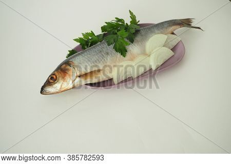 Fish. Its A Whole Herring. Undivided Herring With Onions And Parsley. Close-up, White Background.