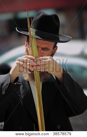 BNEI-BRAK, ISRAEL - SEPTEMBER 22: The religious Jew in a hat is choosing ritual plants /lulav/ at the market on the eve of Sukkot September 22, 2010 in Bnei Brak, Israel. This was Sukkoth market
