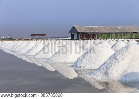 Mass Of Salt In The Salt Sea Salt Farm
