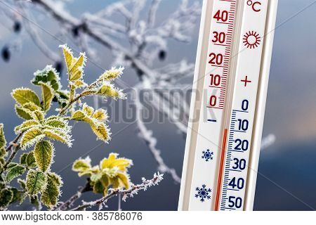 The Thermometer On The Background Of Frost-covered Tree Branches Shows A Temperature Of Minus 10 Deg
