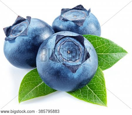 Three blueberries with blueberry leaves isolated on a white background.