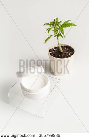 Cbd Body Cream Product And Marijuana Hemp Plant On White Background. The Product Bowl With The Cream