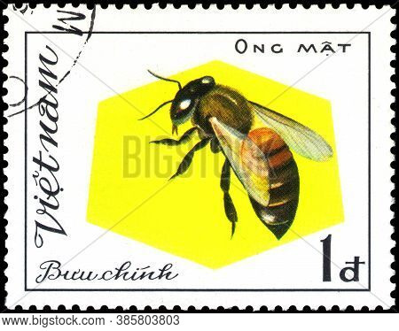 Saint Petersburg, Russia - May 31, 2020: Postage Stamp Issued In The Vietnam With The Image Of The W