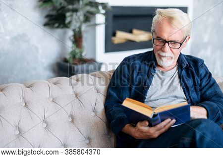 Senior Man Spends Leisure Time Reading Book Sitting On The Comfortable Couch At Cozy Home. A Gray-ha