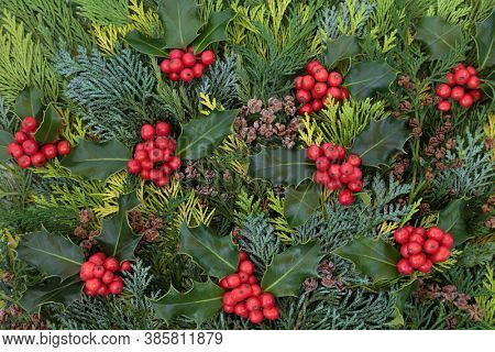Traditional winter holly berry & evergreen cedar cypress fir leaf background with small pine cones. Natural greenery for the solstice, Christmas and New Year season. Flat lay, top view.
