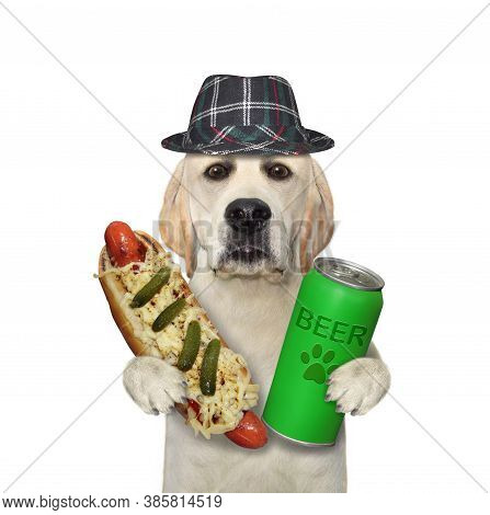 A Dog In A Hat Is Eating A Hot Dog And Drinking Beer From A Can. White Background. Isolated.