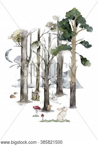 Autumn Forest Flat Hand Drawn Illustrations Set. Woody Flora And Fauna Design Elements. Woodland Ani