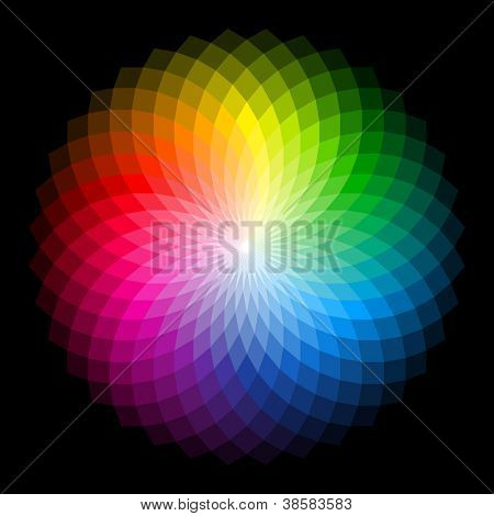 Color wheel. Vector.