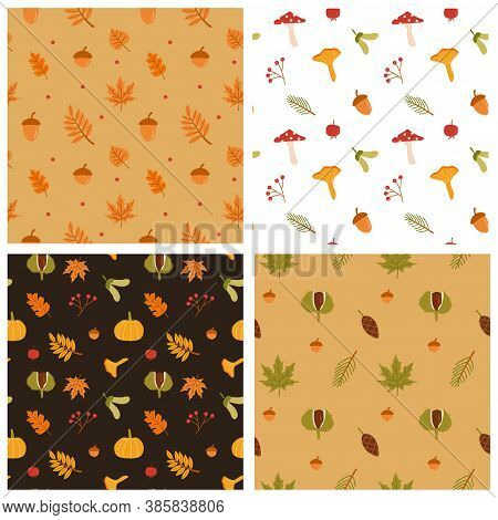Set Of Seamless Patterns. Autumn Forest Leaves, Mushrooms, Pumpkin And Berries Vector. Fall Season F