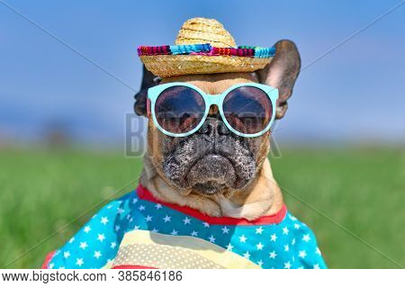Cool French Bulldog Dog Dressed Up With Sunglasses, A Colorful Straw Hat And Poncho Gown In Front Of