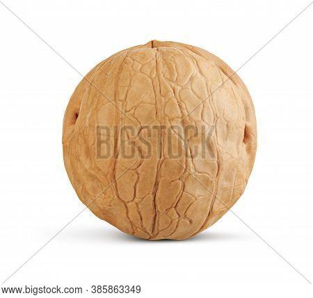 Walnut Isolated On A White Background