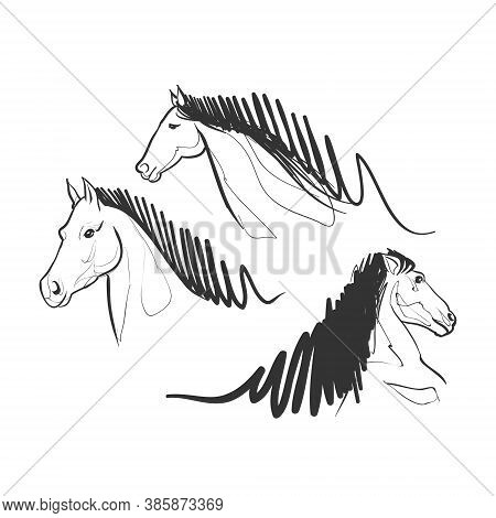 Horse Race Doodle Drawing - Stallion Symbol Mammal Farm Wild Racehorse Run Jockey Domestic Pet Gallo