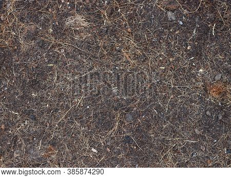 Top View Of Soil With Coconut Fluff