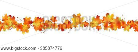 Horizontal Seamless Pattern Bright Dried Maple Autumn Foliage Isolated On White. Graphic Design Autu