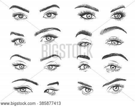 Female Eyes. Glamour Eye Lashes Woman With Perfectly Shaped Eyebrows, Drawn Black Model Eyelashes, D