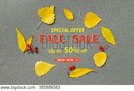 Fall Sale Banner With Autumn Leaves On Gray Background. Sale Up To 50 Percent Off