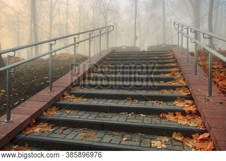 Cozy Alley In A City Foggy Park In The Fall. Gomel, Belarus
