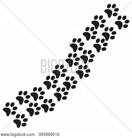Footpath Trail Of Animal. Dog Or Cat Paws Print Isolated On White. Trail Footpath Wildlife, Footprin
