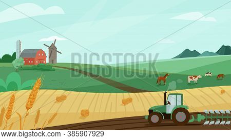Farm Landscape Vector Illustration With Green Meadow, Wheat Field, Tractor Cultivate Earth. Nature S