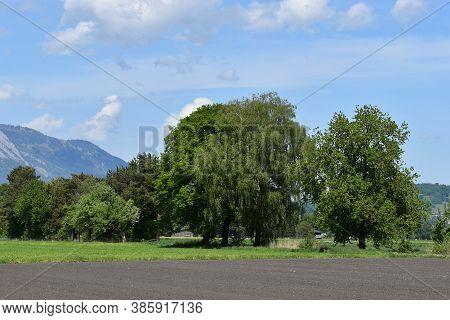 Acre On A Beautiful Day In Liechtenstein