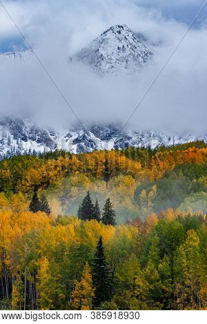 Kebler Pass In Autumn. Golden Leaves Of Aspen Trees In The Beautiful Rocky Mountains Of Colorado.