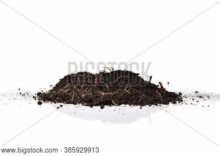 Agriculture Dirt Soil Plant, Organic Farm Grow