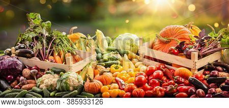 Harvesting Autumn. Happy Thanksgiving Day Background