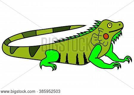 Cartoon Childish Style Vector Illustration Of An Iguana.