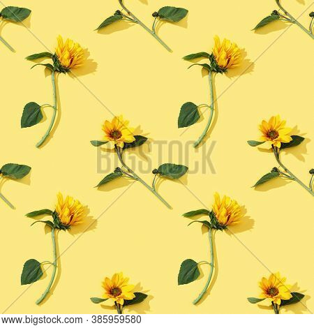 Seamless Regular Pattern From Beautiful Sunflower On Yellow Paper. Natural Autumn Flowers. Autumnal