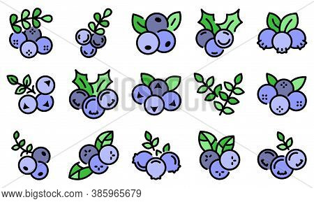 Rowan Icons Set. Outline Set Of Rowan Vector Icons Thin Line Color Flat On White