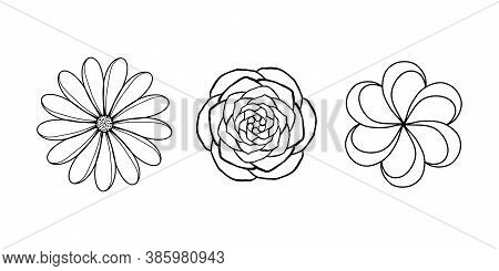 Set Of Floral Icons In Linear Design. Subtle Liys Style, Hawaiian Exotic Flower, Stone Rose And Flow