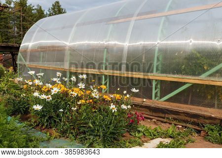 A Flower Bed Next To A Greenhouse In A Vegetable Garden. Greenhouse Made Of Polycarbonate. Greenhous
