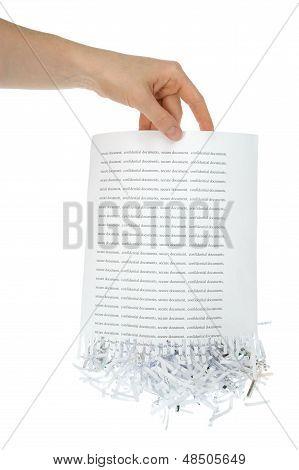 Shredded Paper In Hand