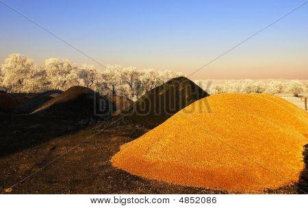 Black And Orange Gravel