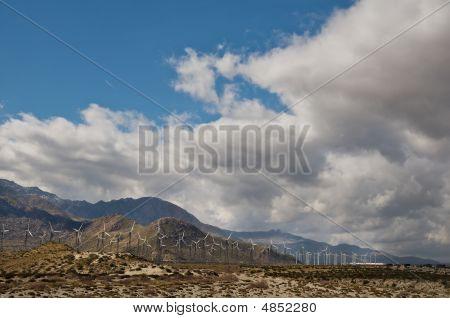 Mtn Wind Farm