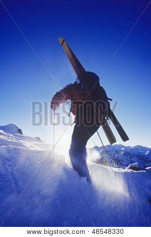 Rear view of a person walking in snow with skis on back