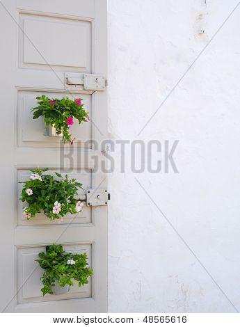 door and flowers