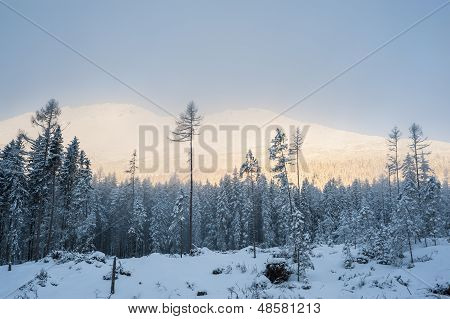 Subrise In Mountains