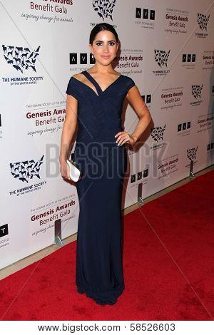Caren Brooks at the 2013 Genesis Awards Benefit Gala, Beverly Hilton, Beverly Hills, CA 03-23-13