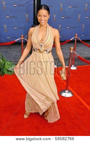 HOLLYWOOD - APRIL 28: Victoria Rowell at The 33rd Annual Daytime Emmy Awards at Kodak Theatre on April 28, 2006 in Hollywood, CA.