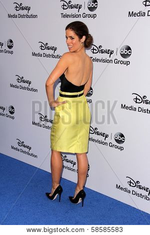 Ana Ortiz at the Disney Media Networks International Upfronts, Walt Disney Studios, Burbank, CA 05-19-13