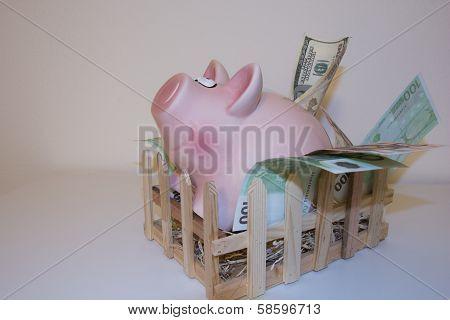 Piggy bank leaving pigpen