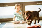 Cute little girl playing fetch with his brown Labrador at home poster