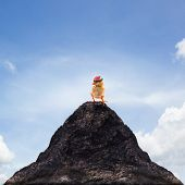 young kid chick baby standing on top peak of mountain abstract for success goal target leaderleader shipadventureriskdangerdangerous poster