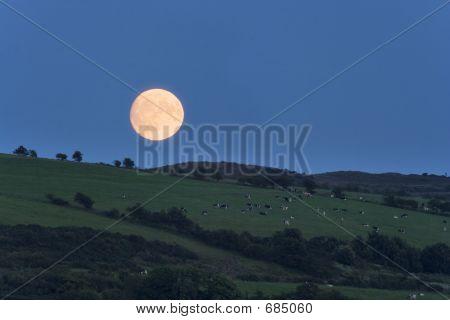 Bute Moonrise