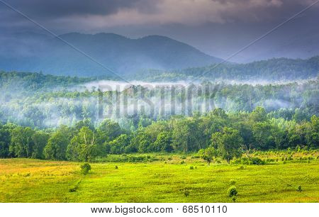 Fog at sunrise at Cade's Cove in Great Smoky Mountains National Park Tennessee. poster