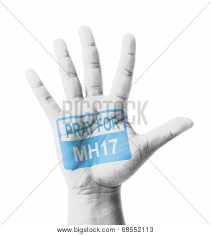 Open Hand Raised, Pray For Mh17 Sign Painted, Multi Purpose Concept - Isolated On White Background